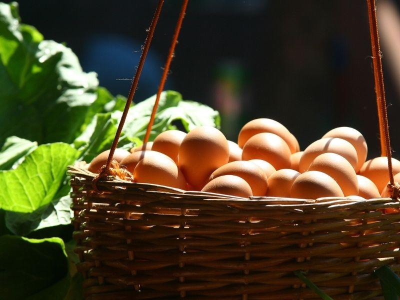 5 alimentos que debemos consumir para cuidar la salud de los ojos